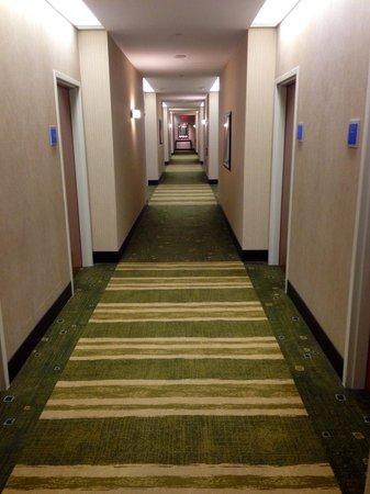 Hyatt Regency Pittsburgh International Airport: Corridor 11th floor