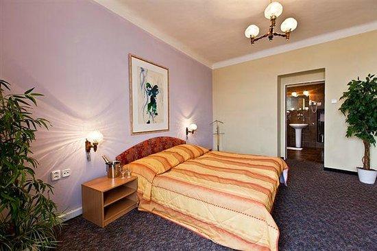 Hotel Slovan: Double room