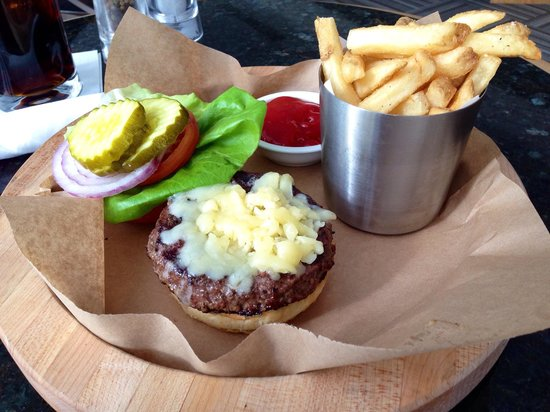 Hyatt Regency Pittsburgh International Airport: My $16 burger and fried with soda