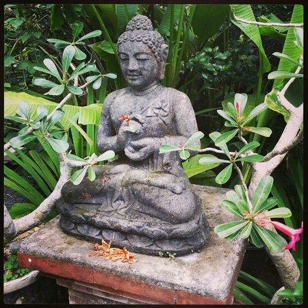 Nirwa Ubud Homestay : Centrepiece in the Common Area