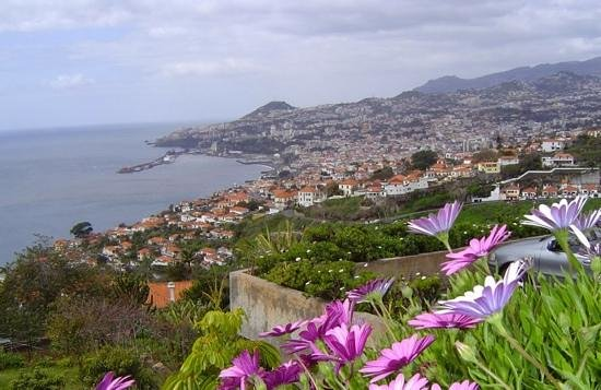 Doca do Cavacas: funchal