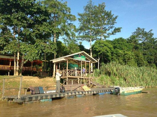 Bilit Rainforest Lodge: Пристань