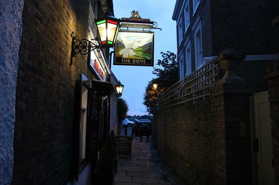 The Dove at Hammersmith : The Dove
