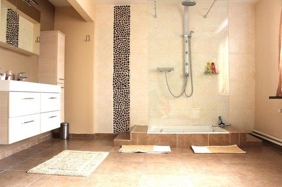 Bed and Breakfast Het Consulaat: Bathroom of the Deluxe room