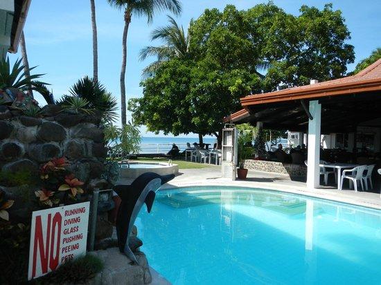 Coral Beach Club: Pool Area