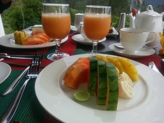 Madulkelle Tea and Eco Lodge: The breakfast and the view