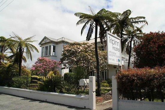 TripInn Hostel, YHA Westport: Hotelansicht mit Garten von der Strasse