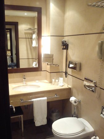 Starhotels Ritz : bathroom