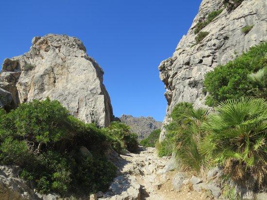 Boquer Valley (Val de Boquer): Boquer Valley