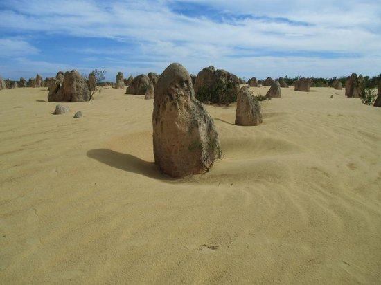 The Pinnacles : 砂漠の中の奇岩