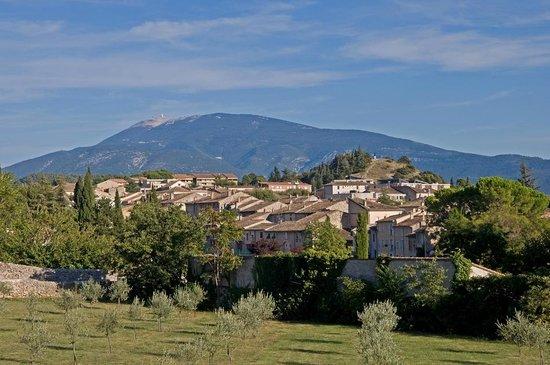 Les tilleuls d'Elisee : Mont Ventoux & Vaison
