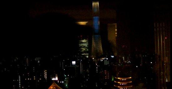 Asakusa View Hotel: 展望室からの夜景