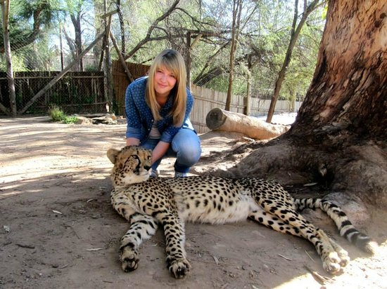 Cango Wildlife Ranch: Hautnah mit einem Geparden in Kontakt kommen