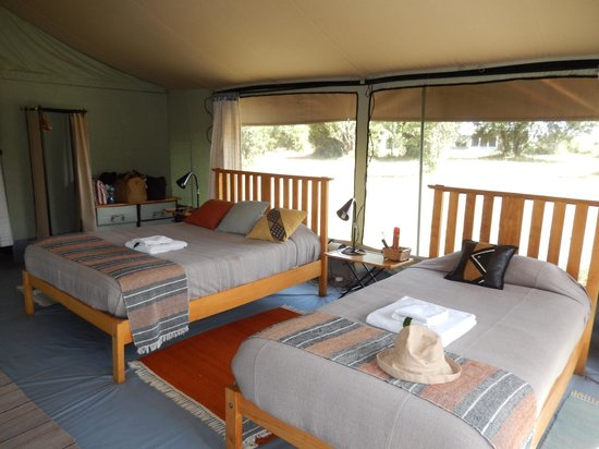 Porini Lion Camp : Comfy beds and other nice touches.