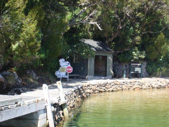 Paterson Inlet Cruises - Stewart Island Experience: Остров Ульва