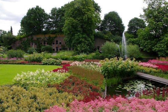 Utrecht, Paesi Bassi: Botanische Tuinen