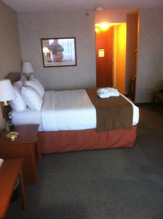Ramada Plaza Regina Downtown: Bed