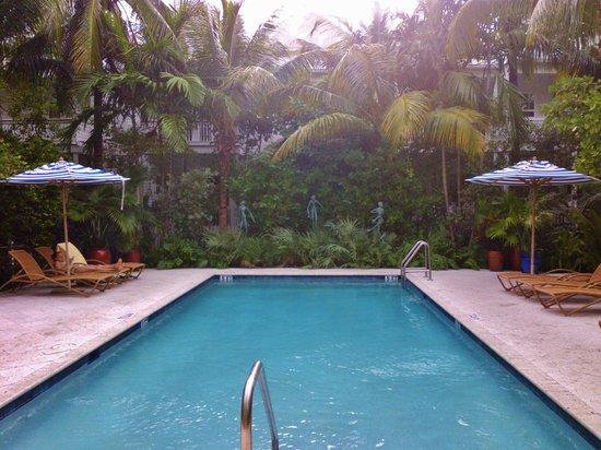 Parrot Key Hotel and Resort: pool (einer der vielen!!)