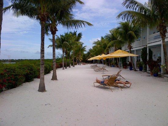 Parrot Key Hotel and Resort: hotelgelände