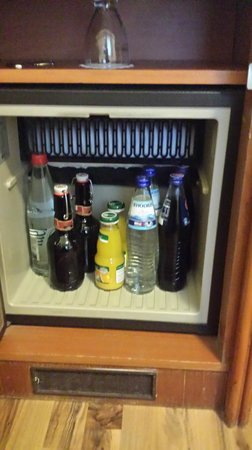 Hotel Excelsior: mini bar
