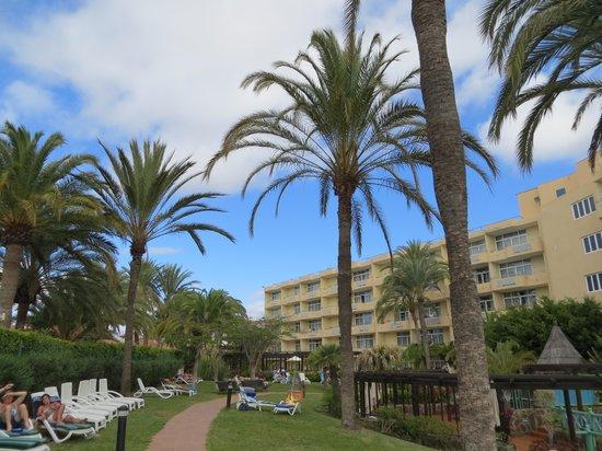 IFA Catarina Hotel: garden area