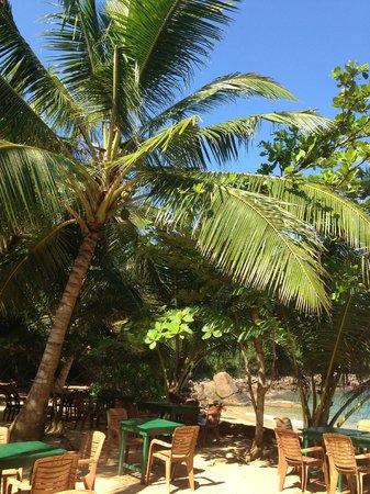 Mini-Hotel VillaWatuna: пляж Джангл