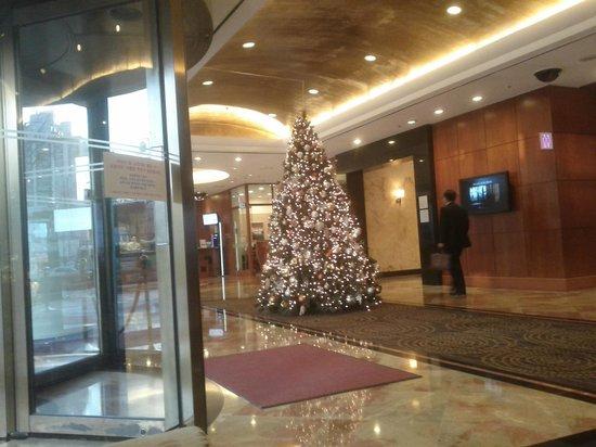 Novotel Ambassador Doksan, Seoul: X Mas tree