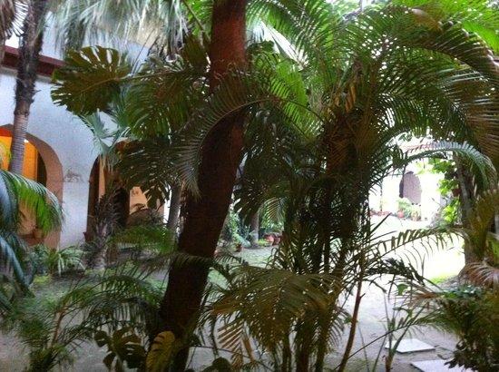 Grand Hotel: A garden view...