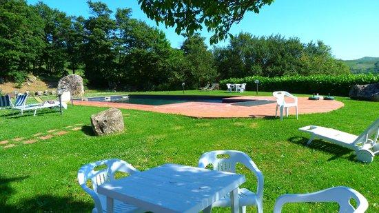 Podere Casano: Giardino e piscina