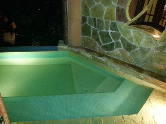 Orixas Art Hotel: Piscina privativa