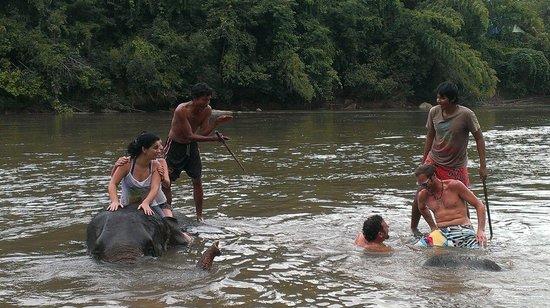 Somnuk Elephant Camp : Muy divertido.