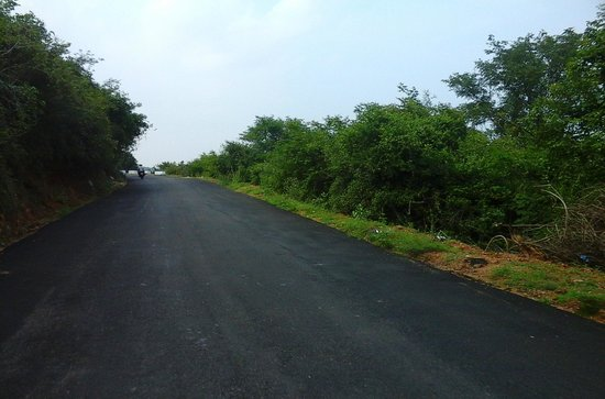 Dindigul, Indie: Good hill roads that let you to Sirumalai without backpains