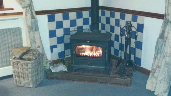 Coedllys Country House B&B: Log fire guest lounge