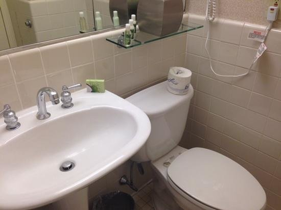 The Roosevelt Hotel: clean sink and toilet - toilet was very tight to opposite wall