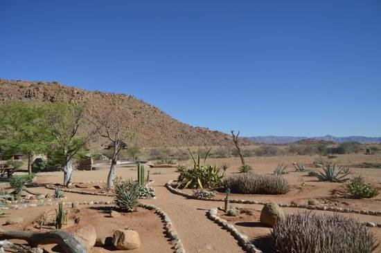 Solitaire Guest Farm Desert Ranch : Beautiful landscape