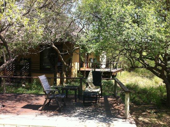 Toro Yaka Bush Lodge : Some of the chairs by the pool
