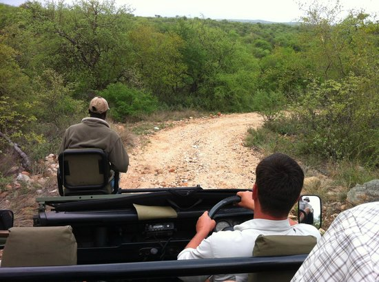Toro Yaka Bush Lodge: Game drive