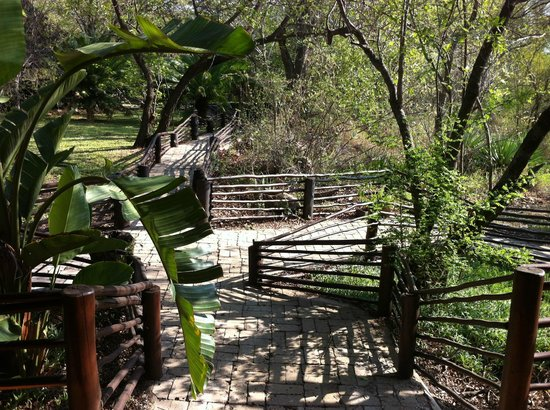 Toro Yaka Bush Lodge : Walkway connecting some rooms to the pool area