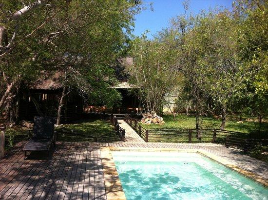 Toro Yaka Bush Lodge : View from the pool