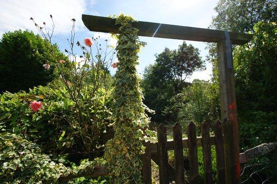 Tovey Lodge: Jardin