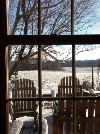 Murphin Ridge Inn: View from our breakfast table