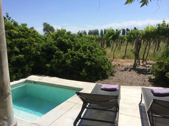Cavas Wine Lodge: Plunge pool