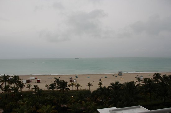 Royal Palm South Beach Miami, A Tribute Portfolio Resort: View from our room