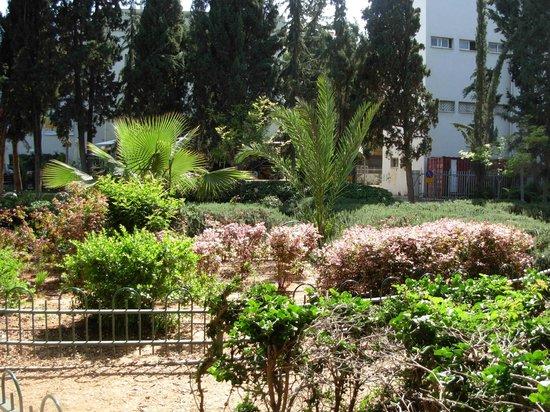 Gan Meir Park: Парк в полдень