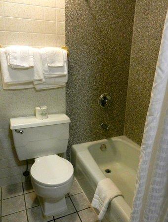 Super 8 Ashland : Dated bathroom, but it was clean