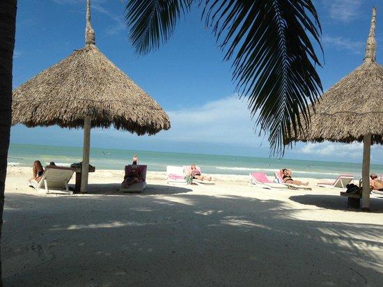 Vista desde Mandarina Restaurant & Beach club by Casa Las Tortugas