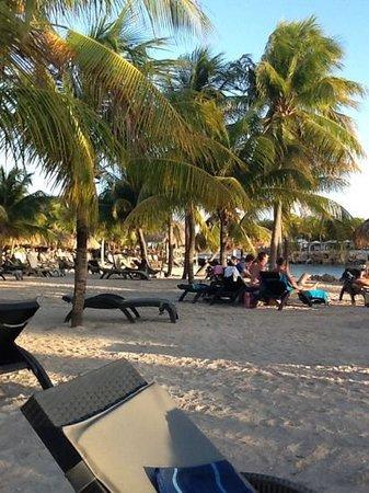 Lions Dive & Beach Resort Curacao : strand met gratis bedden