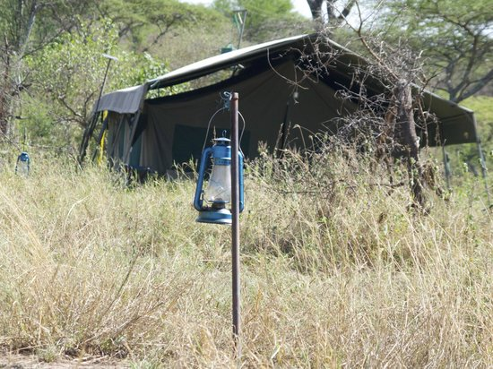 Serengeti Halisi Camp: Zelt