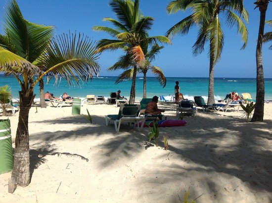 Hotel Riu Palace Punta Cana: Lots of palm trees