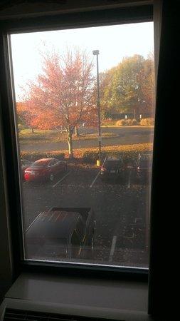 Hampton Inn University Place: Fall colors outside room 221